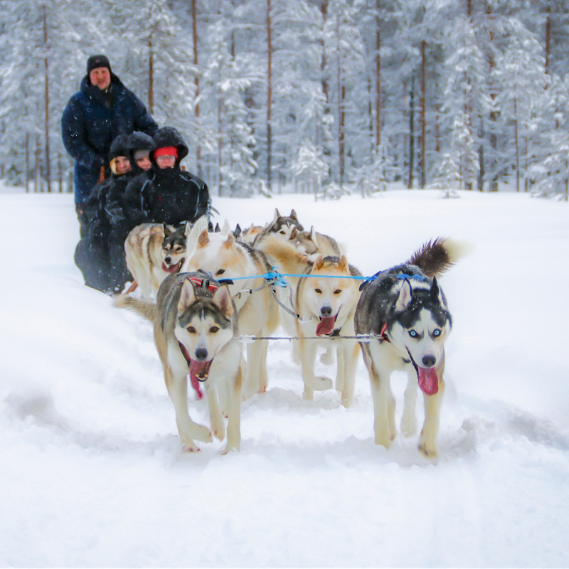 Swedish Lapland – Snow, Action, and High Spirits